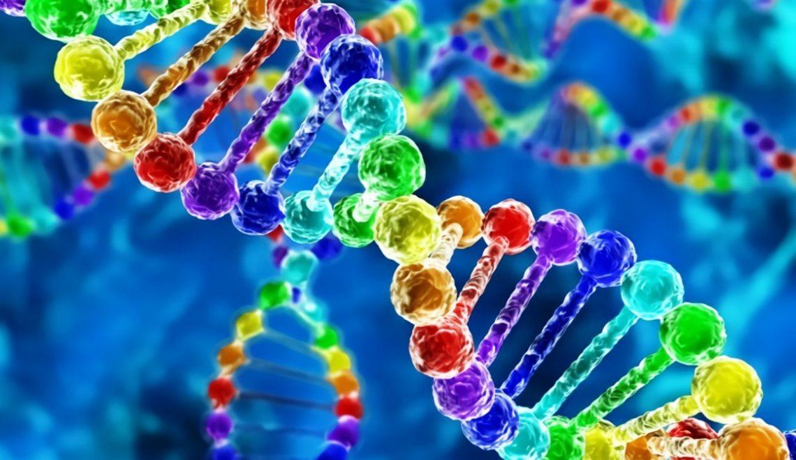 Tüm Bedeni Yenileyen Gen