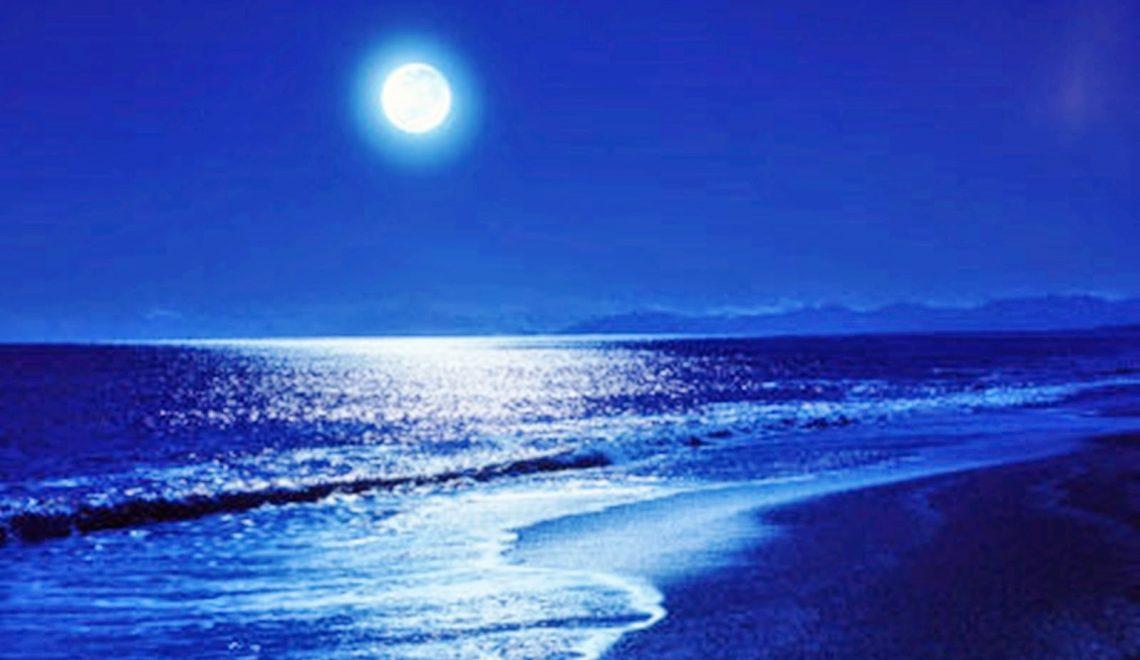 aşk olsun deniz