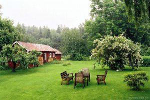 swedish_countryside