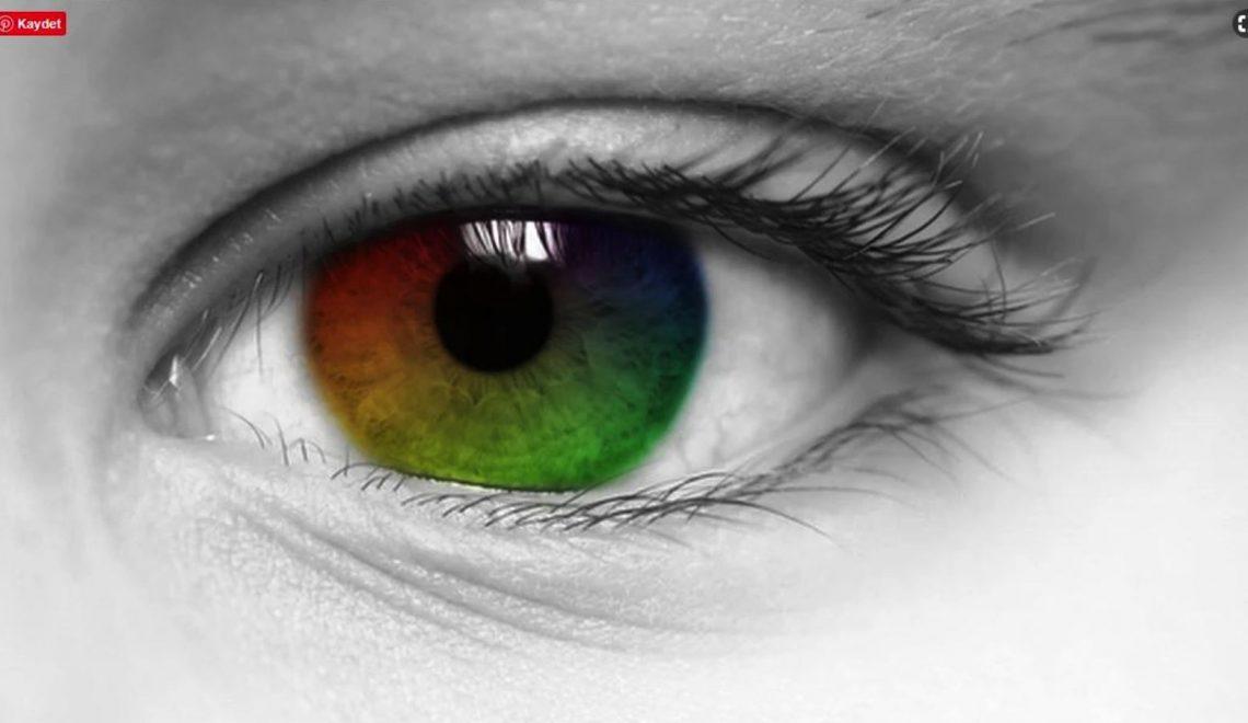 Işık ve Renk Algımız