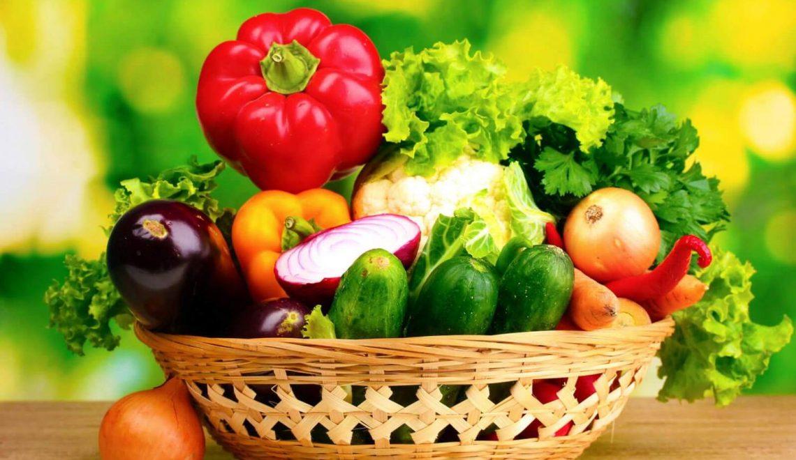 Can Kurtaran Beslenme Şekli