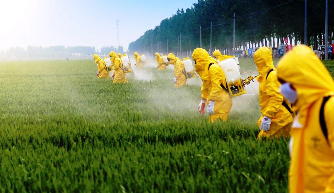Pestisitlerin Beyine Etkileri